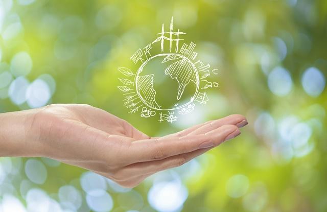 A importância de indivíduos e empresas trabalharem juntos para incrementar a sustentabilidade